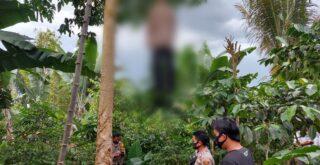 warga gantung diri diatas pohon jengkol di Tanggamus, senin (25/1/2021)